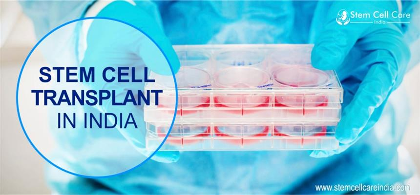 stem cell care india